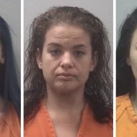 Deputies bust chop shop after seizing guns, drugs
